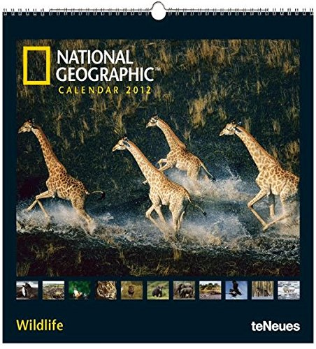 National Geographic Calendar Wildlife 2012