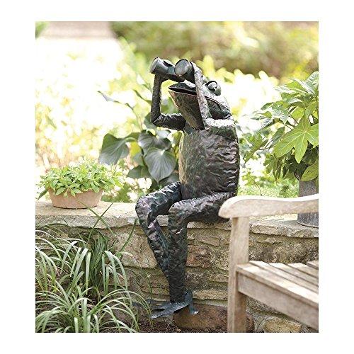 Handcrafted Metal Frog With Binoculars