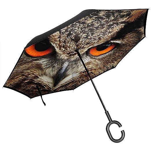Merle House Ojos de pájaro Vista de búho Real Animales Paraguas ...