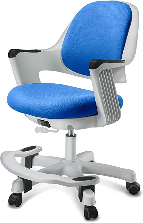 Blue, Rotatable LiEaDo Childrens Ergonomic Learning Chair with Corrected Sitting Posture Multifunctional Kids to Teenager Computer Chair Adjustable Lifting Backrest with Armrest Footrest Writing Chair Suitable for Family