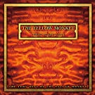 Triad Years Act I & II : The Very Best of The Yellow Monkey (Remastered)