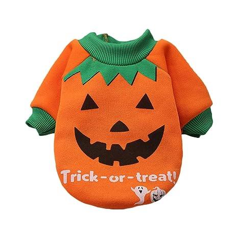 FJROnline - Camisa de Halloween para Perro, Disfraz de Calabaza ...