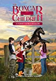 A Horse Named Dragon (Boxcar Children Mysteries, #114)