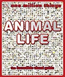 img - for One Million Things: Animal Life by Richard Walker (2009-06-15) book / textbook / text book