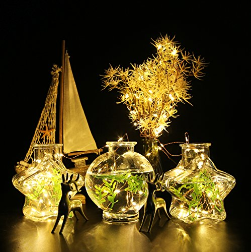 Aolun Led String Lights with Remote, Fairy Lights and Waterproof Decorative String Lights-Outdoor and Indoor for Bedroom/Patio/Garden/Backyard/Party/Bistro/Christmas Copper Wire Lights, Warm White