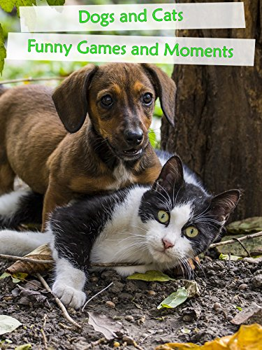 Dogs and Cats - Funny Games and Funny Moments - For Cats And Dogs :