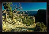 Grand Canyon 06 Framed Print 18.2''x27.92'' by Gordon Semmens