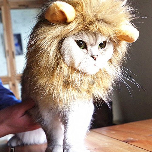 Idepet Dog Cat Lion Mane - Realistic & Funny Lion Mane for Dogs - Complementary Lion Mane Hat for Dog Cat Costumes,Halloween Lion Mane Costume for Cat & Dog (Cat Lion Mane)]()