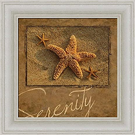 Charming Serenity By Dora Rotondella Starfish Bathroom Decor Art Print Framed Picture