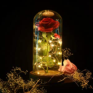 shirylzee Eternal Flower Beauty and The Beast Rose Fake Flowers Enchanted Rose in Glass Dome Rose lamp Gifts, LED Light Romantic Home Decor Gifts for Valentine's Day Mother's Day Wedding Anniversary