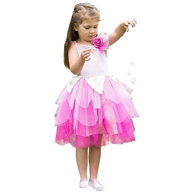e4a484648ee4 Dance Gear Rose Petal Fairy Costume  Amazon.co.uk  Clothing