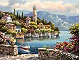 DIY Pre-Printed Canvas Oil Painting Gift for Adults Kids Paint by Number Kits With Wooden Frame for Home Decor - Flower Castle 16*20 inch