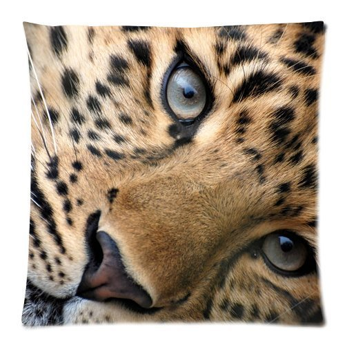 Casebynow Custom Animal Leopard Zebra Print Personalized Cushion Case 18x18 Inches 300 Thread Count Pillow Cover by CASECOCO (Zebra 300 Thread)