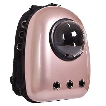 Transportin de viaje para gatos o pequeños perros Mochila ligero impermeable respirable ABS Dorado: Amazon.es: Productos para mascotas