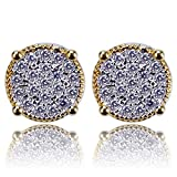 Hip Hop Jewelry Gold and Silver Iced Out Bling Screw Back Stud Earrings For Men and Women