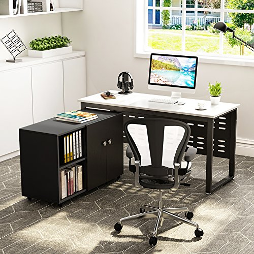 (Computer Desk and File Cabinet, LITTLE TREE 55