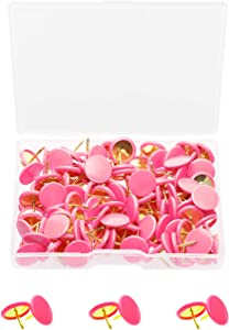 Tupalizy 120PCS Flat Plastic Round Head Map Thumb Tacks Push Pins with Steel for Hanging Art Picture Tapestry Wood Bulletin Cork Board Wall Cubicle and DIY Craft Home School Office Use (Pink)