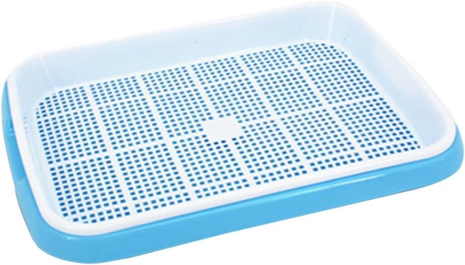 Blu bianco Yavso Vassoi Semina 4Pcs 2 Strati Vassoi Semi Vassoio Piantine Seed Sprouter Semi Germinali Vassoio di Germinazione per Semi e Fagioli