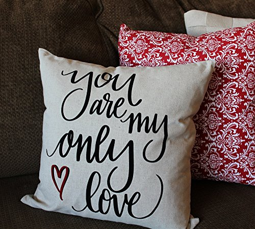 My only love VALENTINE Pillow Cover, Valentine Decor, Sofa Pillow, 16x16 inch, gift (Sofa Presley)
