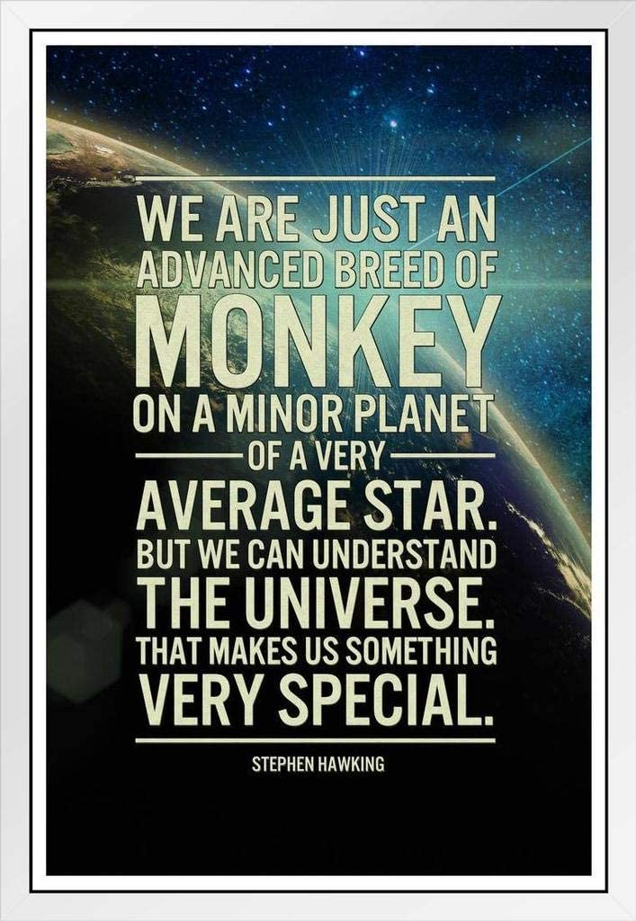 STEPHEN HAWKING AND  HIS QUOTE PICTURE PRINT ON FRAMED CANVAS WALL ART Decor