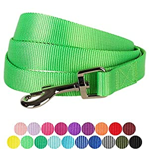 "Blueberry Pet 19 Colors Durable Classic Dog Leash 5 ft x 5/8"", Neon Green, Small, Basic Nylon Leashes for Dogs"