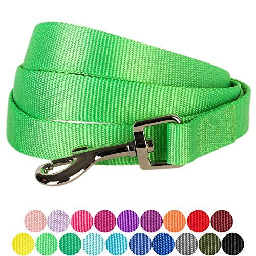 """Blueberry Pet 19 Colors Durable Classic Dog Leash 5 ft x 5/8"""", Neon Green, Small, Basic Nylon Leashes for Dogs"""