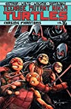 img - for Teenage Mutant Ninja Turtles Volume 16: Chasing Phantoms book / textbook / text book