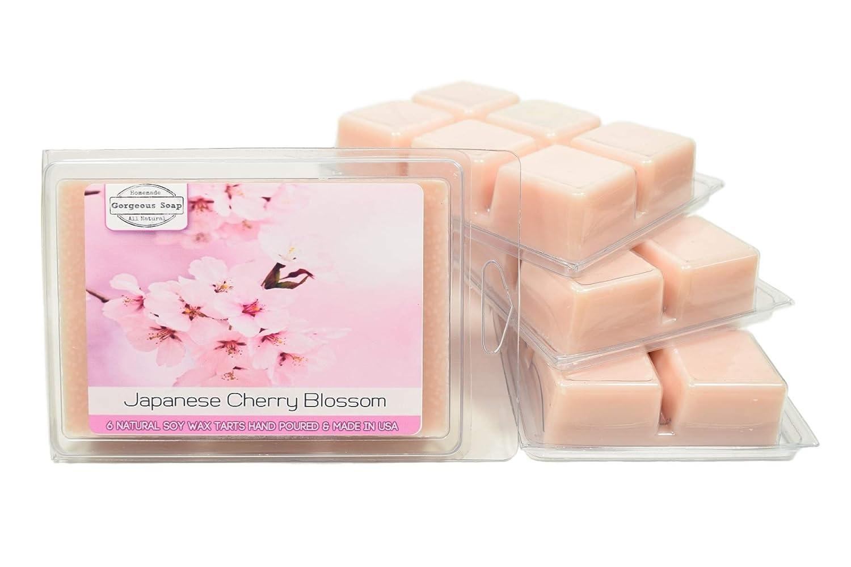10 x Gorgeous Aromatics Fragranced wax melts