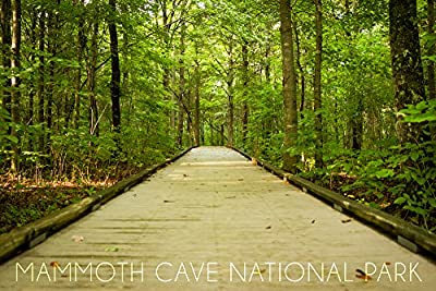 Mammoth Cave, Kentucky - Trail (9x12 Collectible Art Print, Wall Decor Travel Poster)