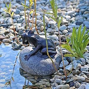 Gárgola Figura de rana en piedra para jardín estanque Brunnen Platillos Figura de agua parte Estanque: Amazon.es: Jardín