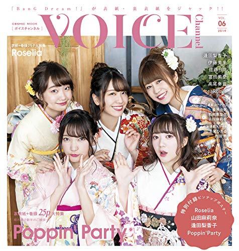 VOICE Channel Vol.6 画像 B
