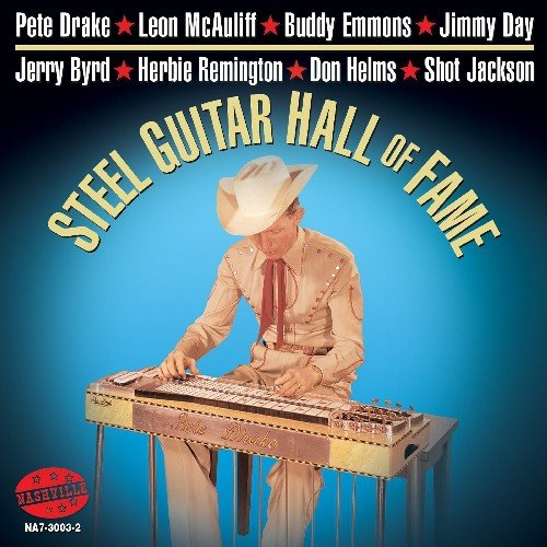 Steel Guitar Hall Of Fame (Best Lap Steel Guitar Players)