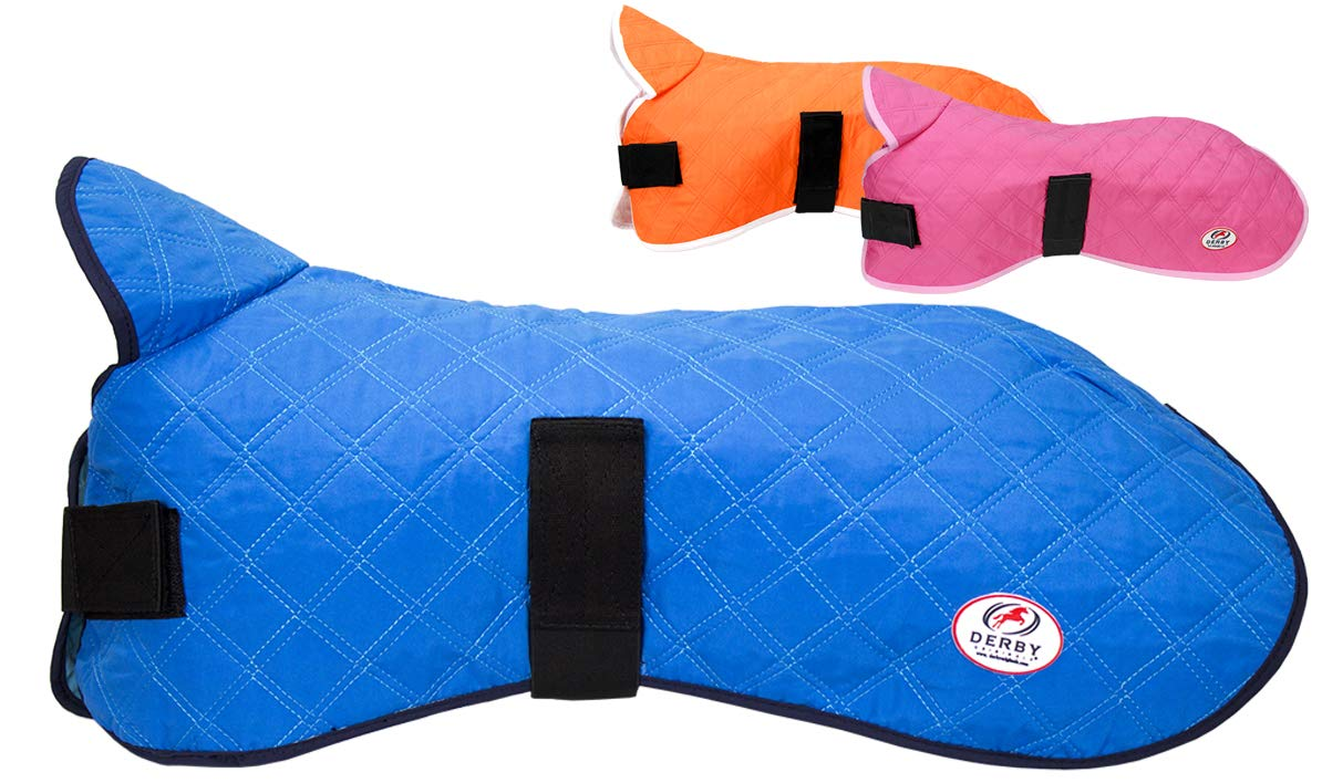 Derby Originals Hydro Cooling Dog Jacket, Reflects Heat & Keeps Dogs Cool for up to 10 Hours (Royal Blue, 22'')