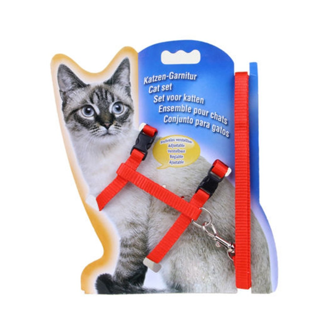 Amazon.com : MIOIM Cat Harness Traction Kit Adjustable Nylon Strap Collar with Leash Safety Rope leads for Cat and Small Pet Black : Pet Supplies