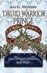 Druid Warrior Prince (Celtic Stewards Chronicles Book 3)