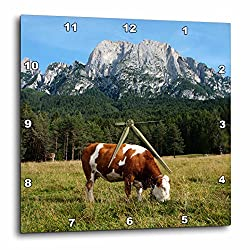 3dRose Simmental Cow Grazing - Wall Clock, 13 by 13-Inch (dpp_165722_2)
