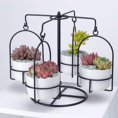 Carousel Plant Stand with 4 Pots Succulent - White Modern Decorative Ceramic Flower Planter Plant Pot with Drainage - Home Office Desk Garden Mini Cactus Pot Indoor Decoration : Garden & Outdoor