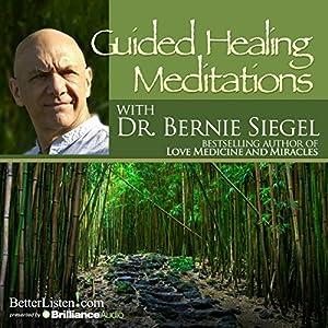 Guided Healing Meditations Speech