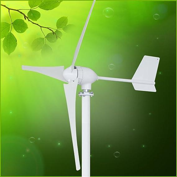 TOPQSC Wind Turbine Wind Generator 700W DC 24V Wind Turbine High