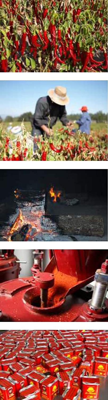 Pimentón Ahumado Picante - LA CHINATA - DOP La Vera - Lata de 160 g - Sin Gluten