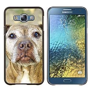 American Pit Bull Terrier Dog canina- Metal de aluminio y de plástico duro Caja del teléfono - Negro - Samsung Galaxy E7 / SM-E700