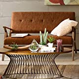 Rocket Loveseat with Solid Wood Frame and Rubber Wood in 100% Polyester Fabric Sinuous Coil Support (Orange)