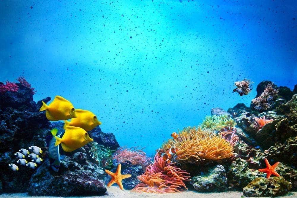 CHXFit Criatura submarina Adecuada para niños y Adultos Principiantes Pintura Digital DIY Pintura Decorativa Pintada a Mano Pura Presente-40x50cm