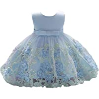 Vicokity Newborn Toddler Baby Girls Dress Tulle Wedding Flower Girl Dress Floral Bowknot Princess Birthday Dress
