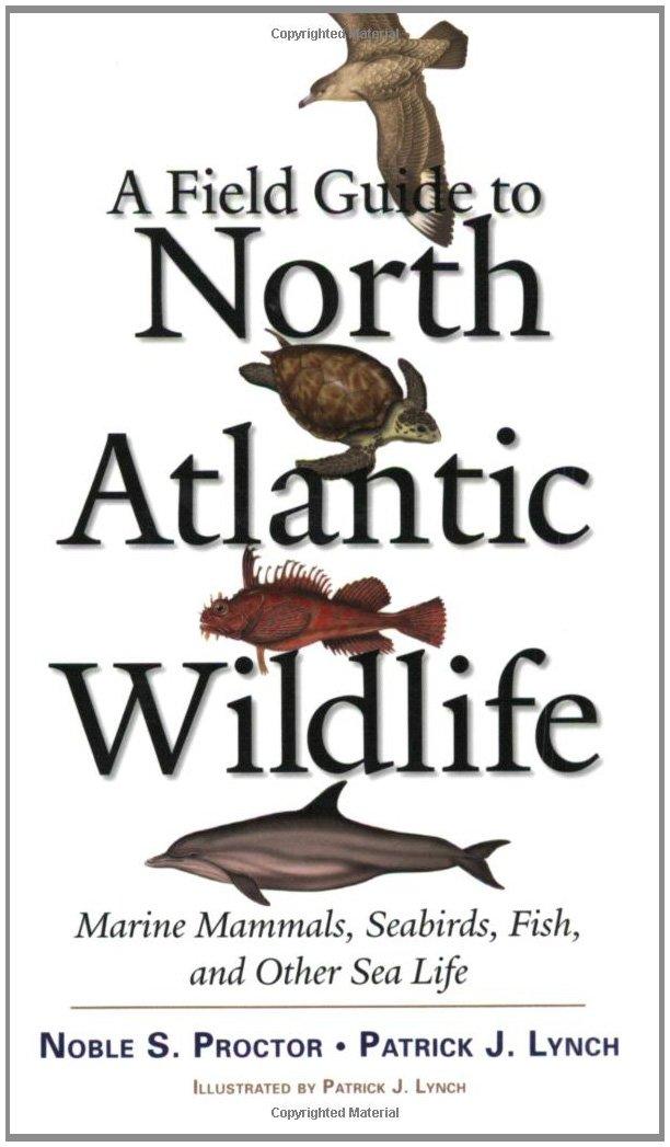 Florida to Canada Atlantic Seashore Field Guide