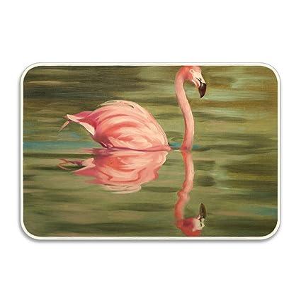 Amazon Cecil Beard Front Welcome Entrance Doormat Flamingo Oil