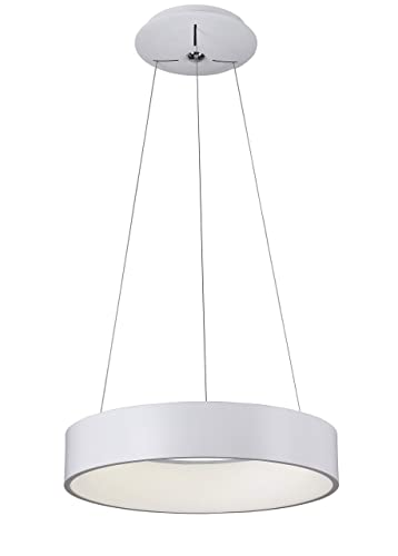 Ronza - Lámpara de techo LED integrada, color blanco: Amazon ...