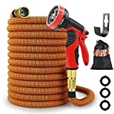 FENGLE Garden Hose Lightweight Durable Flexible Water Hose with 3/4 Nozzle Solid Brass Connector and High Pressure Water Spray Nozzle Expanding Hoses (75Ft)