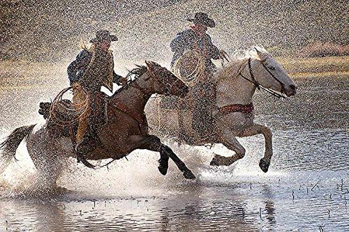 Splash Dance Lisa Dearing Photograph Animal Horse (Choose Size of Canvas)