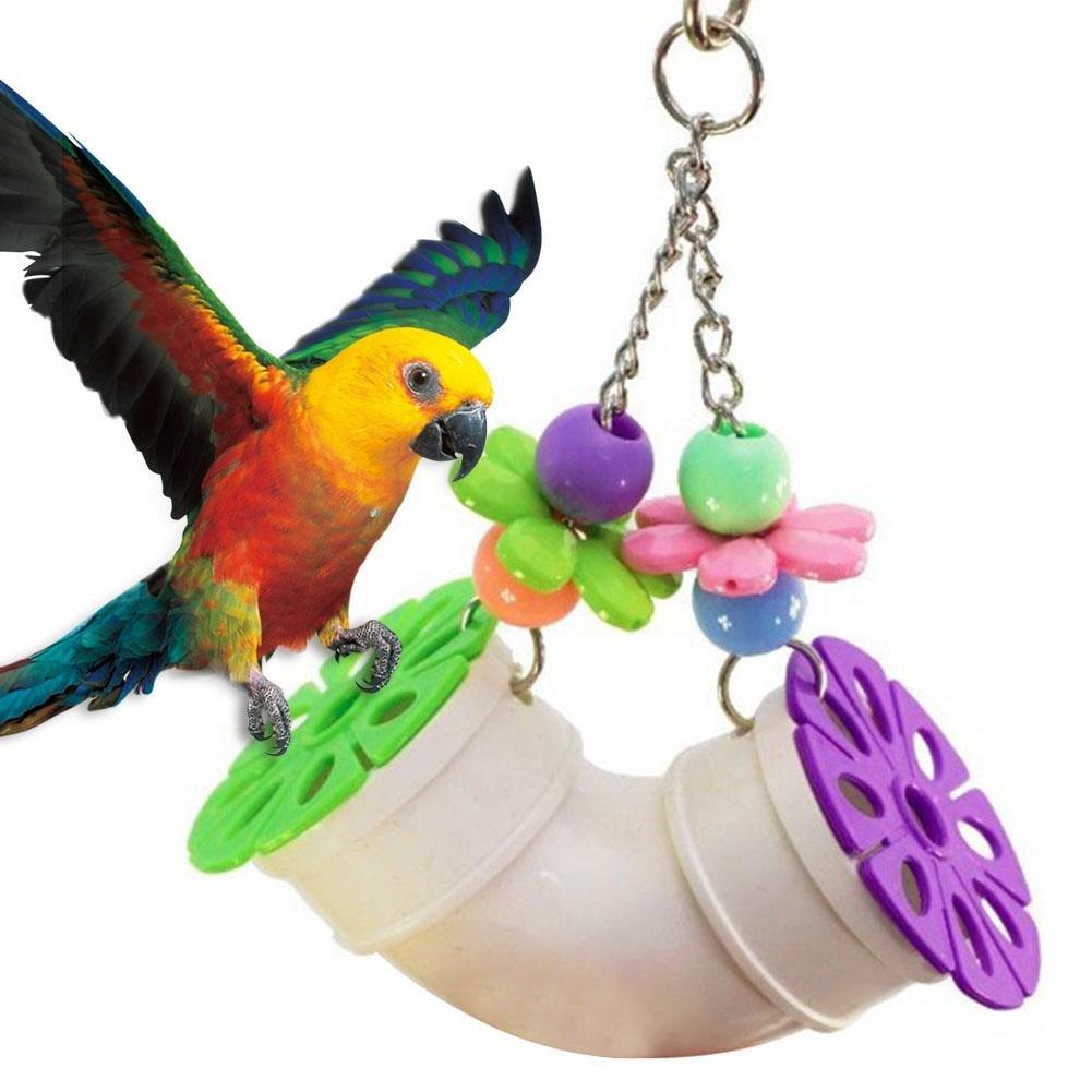 jouets pour oiseaux pour perroquet ? m?cher morsure jouet perroquet pipeline jouet morsure acrylique morsure d'oiseau animal morsures ? m?cher jouet suspendu belle herbe Rafi panier avec des cloches n iBasteFR